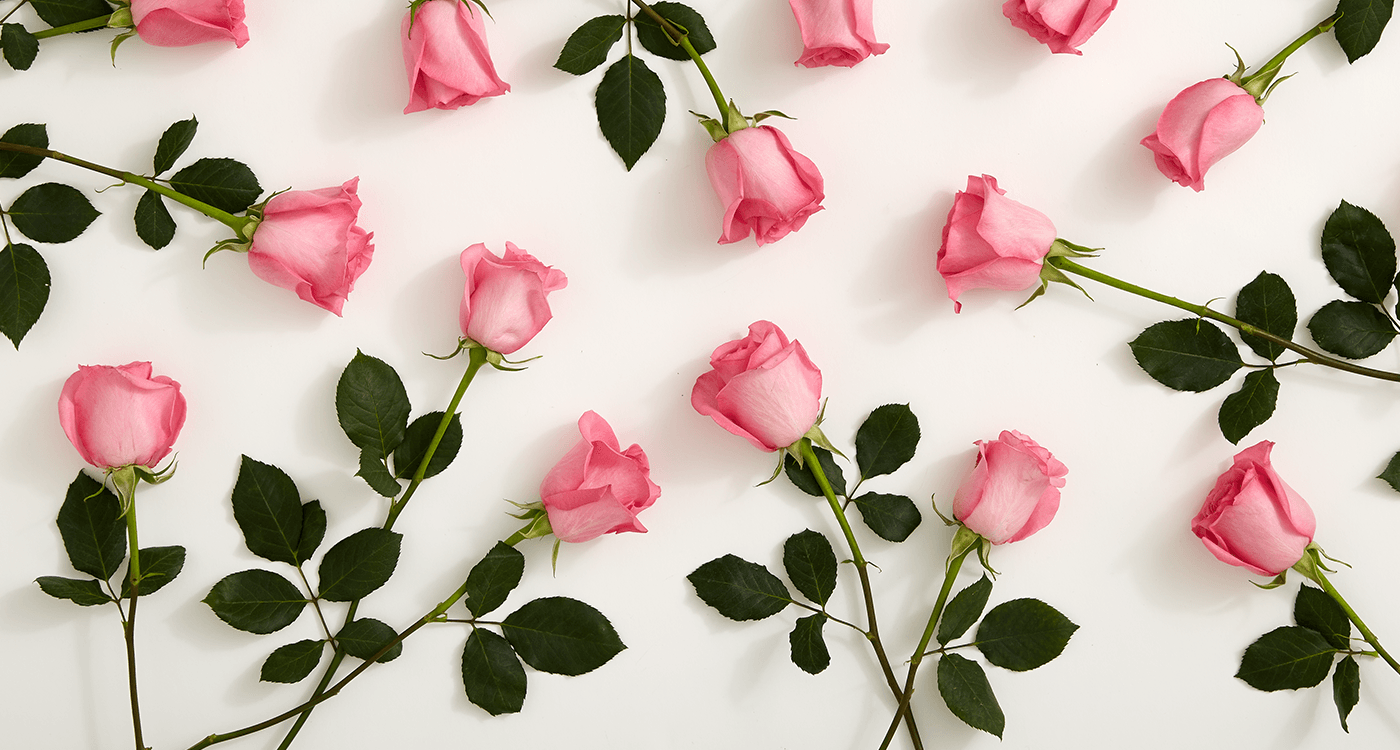 Meaning of Number of Roses